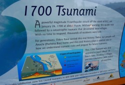 A sign by Anacla commemorates a tsunami disaster in 1700. Geology points to older tsunami sites along the west coast of Vancouver Island (Mike Youds photo)