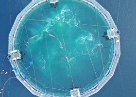 A semi-closed containment system, seen from from above, is currently being tested in Ahousaht waters. (Sam Chen/Cermaq photo)